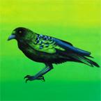 Crowicoon